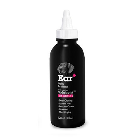 Cat Ear Cleansing Site Youtube Com