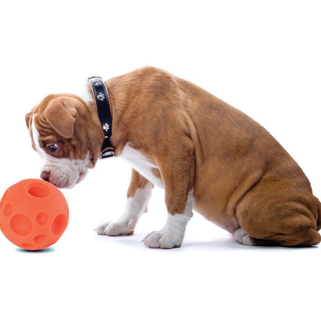 Large Play Balls For Dogs