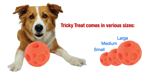 tricky treat training ball